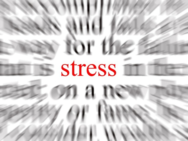 To stress or not to stress ? 5 astuces pour lutter contre !